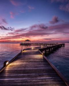 Maldives haloidays